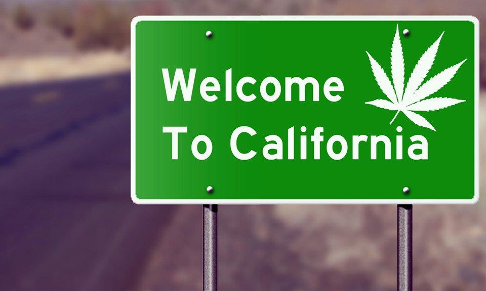 california-cannabis
