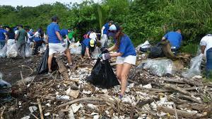 plasticos contaminan