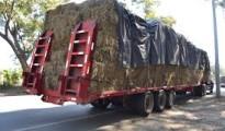 camion con alimentos de ganado