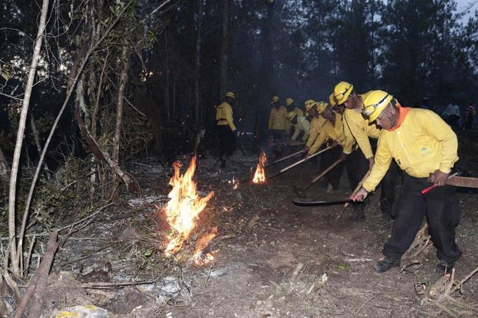 incendio en sierra de bahoruco